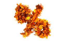 Fall  alphabet letter % - stock illustration