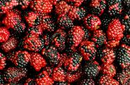 Stock Photo of Lots of berries arranged at the background