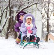 a sleigh - stock photo