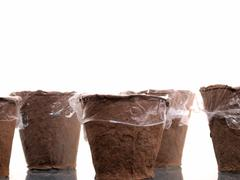 Stock Photo of special seedling pots, covered with polythene