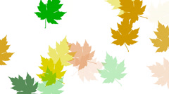 Colorful leaf prints fill the frame. Stock Footage