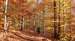 Man Runs on a Path in the Woods Stock Footage