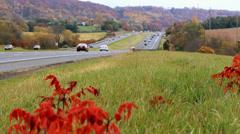 Traffic in Fall Season Stock Footage