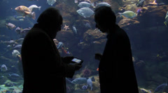 Two men at aquarium on phone shilouette and exchanging info - stock footage
