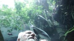 Two men exchange information in the aquarium Stock Footage