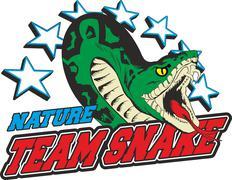 team snake - stock illustration