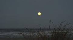 005 Laguna, sunset at sea, full moon Stock Footage