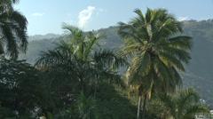 Port au Prince 30P 02 Stock Footage