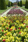 Flower bed in the park - stock photo