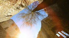 Old castle ruin. sun flare. tree Stock Footage