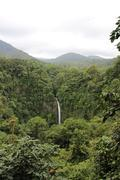 jungle waterfall scene - stock photo