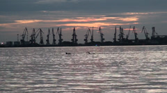 Marine port in evening time Stock Footage