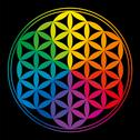 Stock Illustration of Flower Of Life Rainbow Colors