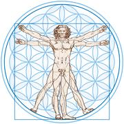 Vitruvian Man In Flower of Life Stock Illustration