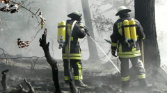 Feuerwehr bei der Waldbrandbekämpfung / Firefighters in forest fire fighting Stock Footage