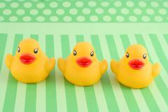 three rubber duckies - stock photo