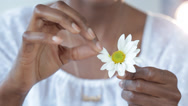 Stock Video Footage of Close up of Black woman pulling petals off daisy