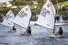 dinghy small racing sailboat - stock photo