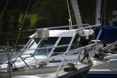 luxury marina - stock photo