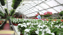 Hispanic woman in greenhouse carrying plants Stock Footage