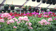 Hispanic woman in greenhouse shopping for flowers Stock Footage