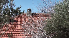 Tiled roof and chimney zoom in Stock Footage