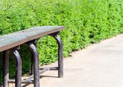 Stock Photo of lonely bench