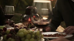 Two couples in vineyard drinking wine and eating grapes Stock Footage