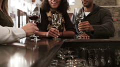 Two couples drinking wine at wine bar Stock Footage