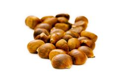 Many chestnuts isolated on the white background - stock photo