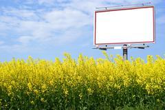 Blank white billboard in a rapeseed field Stock Photos
