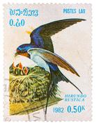 Stamp printed in laos shows barn swallow (hirundo rustica), from series birds Stock Photos