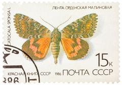 "Stamp printed in the ussr (russia) shows a butterfly with the inscription ""ca Stock Photos"