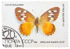 "stamp printed in the ussr (russia) shows a butterfly with the inscription ""sa - stock photo"