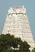 sri azhagiya manavala perumal temple in tiruchirapalli,southern india - stock photo