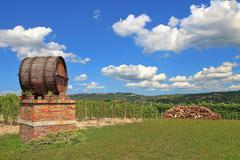 wine barrel and vineyards in piedmont, italy. - stock photo