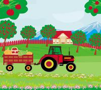 Stock Illustration of landscape with apple trees and man driving a tractor with a trailer full of v