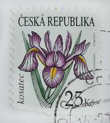 Czech republic - circa 2010 : a post stamp printed in czech republic shows ir Stock Photos