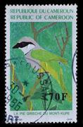cameroon -circa 1991 a stamp print in cameroon shows a bird, circa 1991 - stock photo