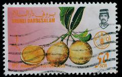 brunei darussalam - circa 1987: a stamp printed in brunei darussalam shows ma - stock photo
