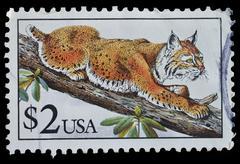 usa. postage stamp shows bobcat - stock photo