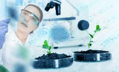 Ecology laboratory. Stock Illustration
