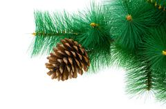 Stock Photo of Christmas tree isolated on the white background