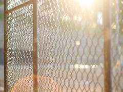 Baseball fence dolly side Stock Footage