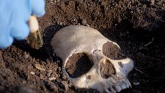 Track over police csi uncovering skull - stock footage