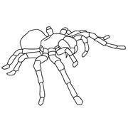 tattoo spider tarantula on blom background - stock illustration