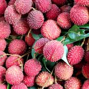 lychee or litchi at fruit market - stock photo
