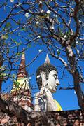 yai chai mongkol temple, ayutthaya, thailand - stock photo
