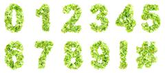 Green leaves digits - stock illustration