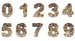 Zoo digits Stock Illustration